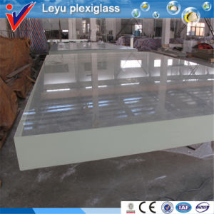 100% Lucite Virgin Material Clear Acrylic Swimming Pool pictures & photos