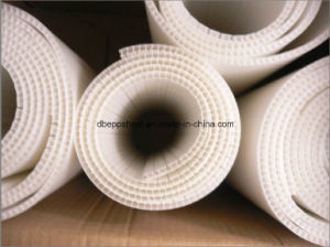 PP Corrugated Box and Container pictures & photos