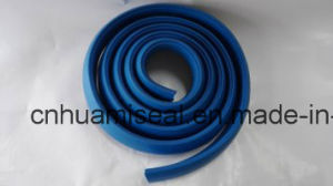 Sealing Strip of Rubber Oil Seal pictures & photos