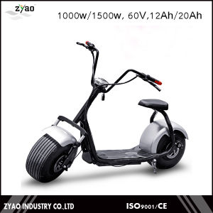 2016 Popular Ce 1000W 60V 12ah Front Suspension Fat Wheel Electric Scooter Double Seat pictures & photos