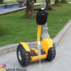 off Road Scooter for Sale High Quality Electric Standing Chariot pictures & photos