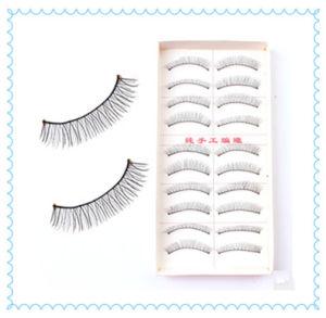 10 Pairs of Reusable Mix Eye Lash, Regular Long False Eyelashes pictures & photos