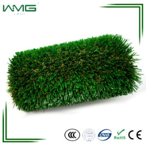 Plastic Economical Lawn Turf No Filling Artificial Grass Green Wall pictures & photos