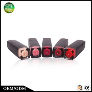 Free Sample Skin Care Beauty Product 5 Colors Long Lasting Waterproof Lipgloss pictures & photos