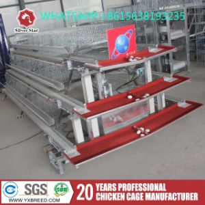Silver Star Automatic a Type Layer Cage pictures & photos