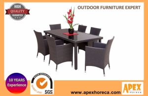 Popular Outdoor Rattan Furniture Wicker Garden Furniture Dining Set pictures & photos