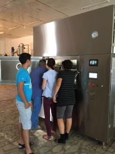 Kwzg Microwave Vacuum Drying Machine/ Cereal Rice Grain Seed Dryer/Cabinet Microwave Oven pictures & photos