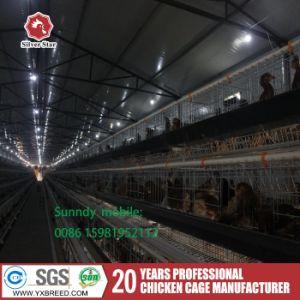 Quail Farming Poultry Farm Layer Cages (4L120) pictures & photos