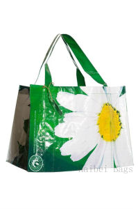 Woven PP Supermarket Green Bag (hbwo-50) pictures & photos
