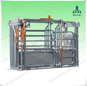 Galvanized or Powder Coated Cattle Weighing Scale for Sale pictures & photos