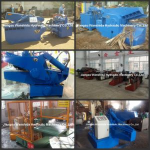 Hydraulic Shears pictures & photos