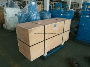 Water Ring Pump Used for Vacuum Evaporation pictures & photos