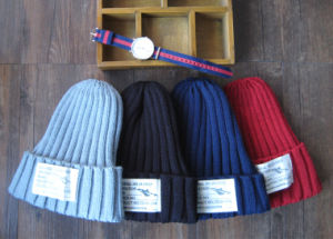 Winter Easy Basic Knitting Knitted Hat pictures & photos