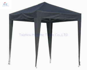 10ft X 10ft (10m X 10m) Stright Leg Folding Tent Outdoor Gazebo Garden Canopy Pop up Tent Easy up Gazebo pictures & photos