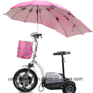 Elderly People Three Wheel Electric Mobility Scooter with Double Seat pictures & photos