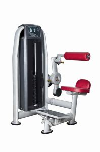 Commercial Fitness Lower Back/Gym for SGS and CE pictures & photos