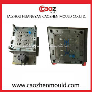 Plastic Injection Flap Cap Mould in China pictures & photos