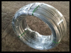 Hot Sale Bwg18 Galvanized Iron Wire pictures & photos
