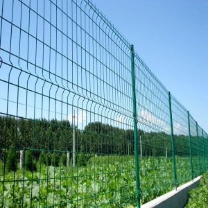 Wire Mesh Fence/Triangle Bend Fence/3D Mesh Panel Fencing pictures & photos