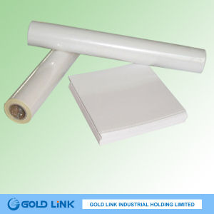 Adhesive Semi Gloss Paper pictures & photos