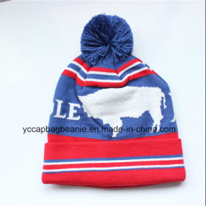 Fashion Ladies Knitted Hat POM POM Beanie pictures & photos
