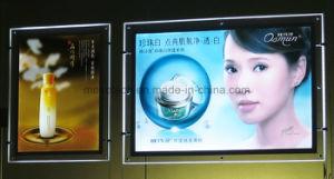 Cosmetics Shop LED Acrylic Advertising Decorative Light Box pictures & photos