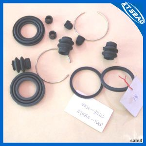 Cylinder Repair Kits 44120-8h325 pictures & photos