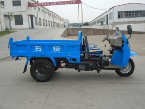 Wuzheng Three Wheel Truck with Wind Shield (WE3B2521101) pictures & photos