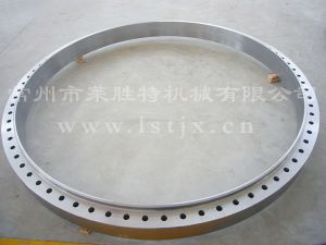 High Quality Smoothness S31603 Flange