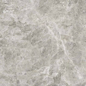 Silver Gragon AA153 Full Polished Porcelain Tile pictures & photos