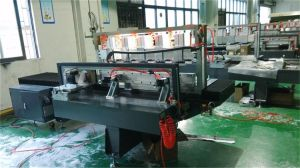 Global Cheap Sale ISO/SGS/CE Certificated Polisher Machine pictures & photos