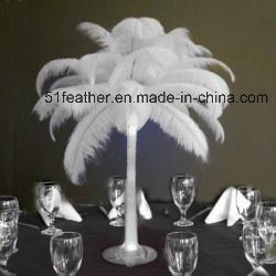 Natural Ostrich Feather for Decoration and Party pictures & photos