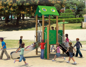 Outdoor Playground pictures & photos