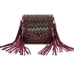 Popular Women Handbag Shoulder Bag with Tassels pictures & photos