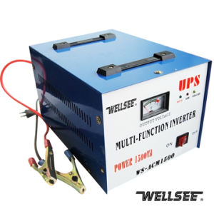 WS-ACM1000 1000W Wellsee Solar Power Inverter