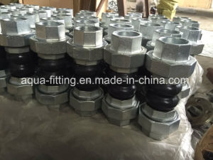 Thread Union Double Sphere Rubber Joint pictures & photos