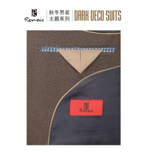 OEM Classic Fit Two Buttons Men′s Business Suit pictures & photos