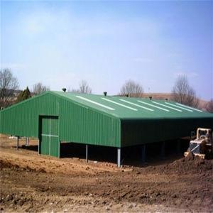 Steel Structure Construction Building pictures & photos
