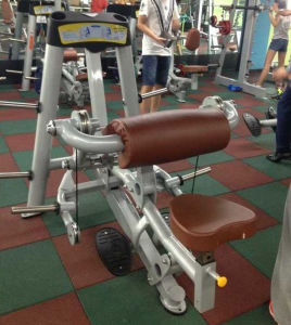 Excellent Hoist Gym Equipment Seated DIP (SR2-08) pictures & photos