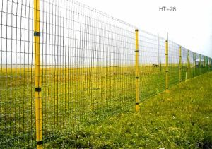 C Farm Eurofence Wire Mesh Fences (Anjia-084) pictures & photos
