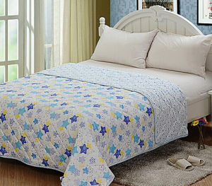 New Design Fashion High Quality Summer Quilt (T145) pictures & photos
