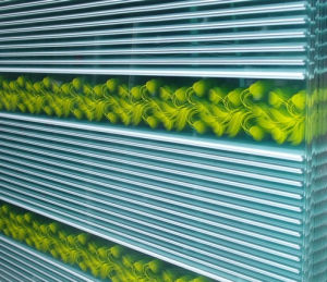 Coated Printing Painted Patterned Tempered Building Laminated Rolled Bubble Pattern Paint Glass Jar Door Window Art Decorative pictures & photos
