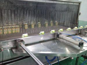 Automatic Fruit Juice Line (1-40TPH) pictures & photos