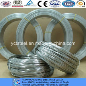 Bright Annealed Stainless Steel Wire-Made in China pictures & photos