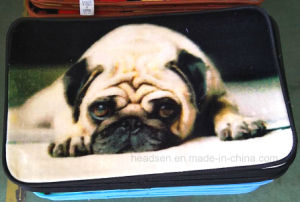 Good Quality Fashion 100% Polyseter Non-Silp Printed Door Mat pictures & photos