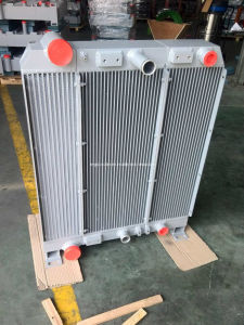 Heat Exchanger (B1001) pictures & photos