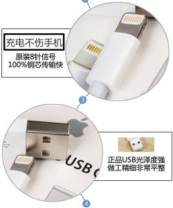 for Iphon7 USB Adapter with Ios8 Lighting Cable pictures & photos