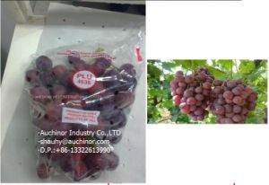 Transparant LDPE Plastic Slider Zipper Bag Grape Bag with Holes pictures & photos