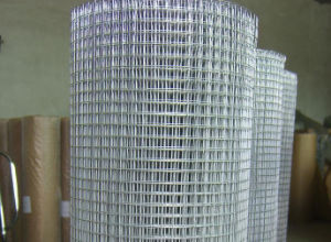 Hot-Dipped Galvanized Iron Wire Mesh in Good Quality pictures & photos