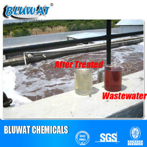 Water Decoloring Agent for Domestic/Sanitary Sewage Treatment pictures & photos